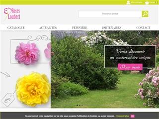 Roses Loubert