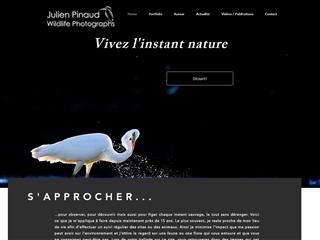 Julien Pinaud - WildlifePhotography