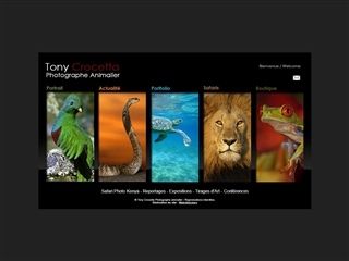 Tony Crocetta, photographe animalier