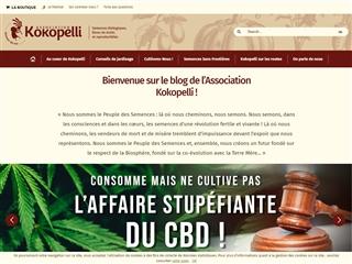 Kokopelli : Blog