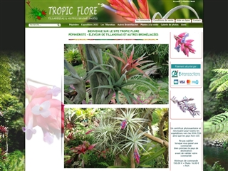 Pépinière Tropic Flore