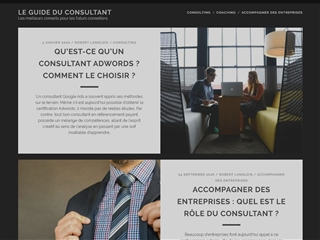 Consulting guide