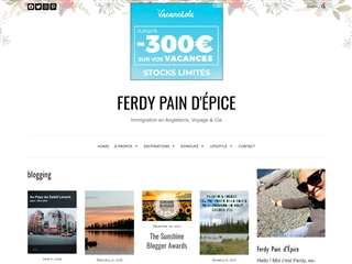 Ferdy Pain d'Epice : Blogging