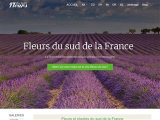 Fleurs du Sud de la France