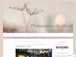 Phénomène de Maud : City-guide Lyon et sa Région