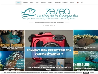 Zesea : Le Blog de la Plongée Bio
