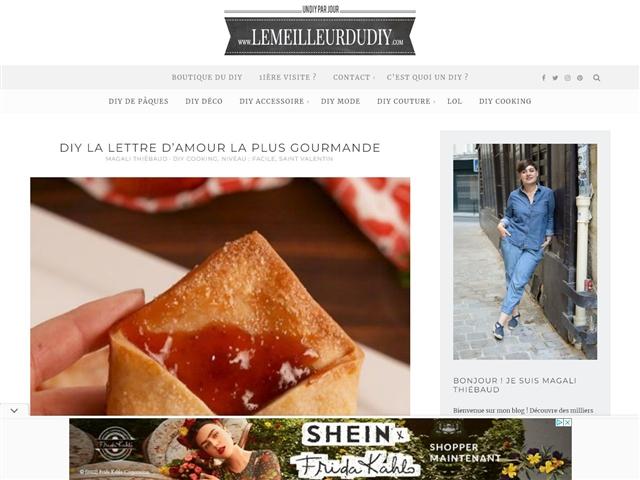LeMeilleurDuDIY.com