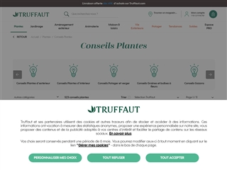 Truffaut : Conseils de Jardinage