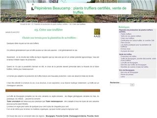 Pépinières Beaucamp : Truffières