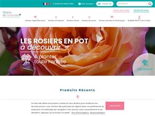 Pétales de Roses .com