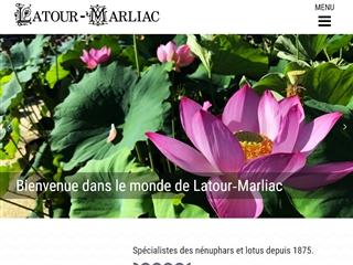 Latour - Marliac Nymphéas