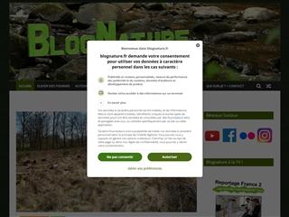 Blog Nature