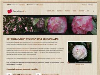 Camellias.Pics