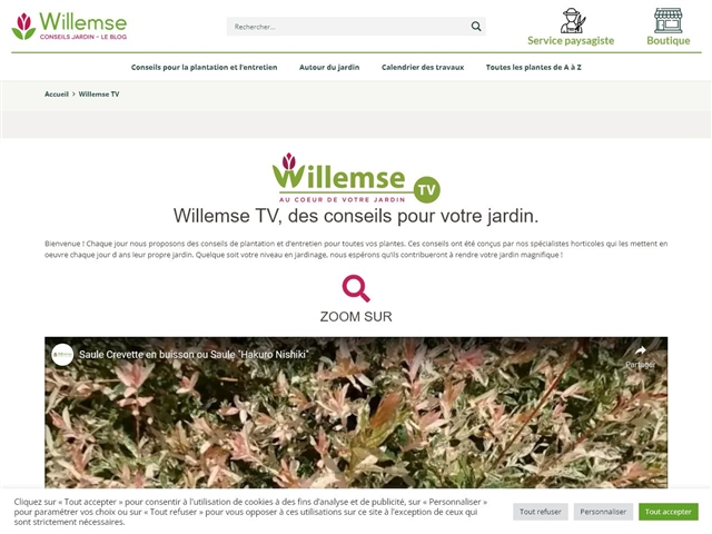 Willemse tv