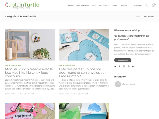 Captain Turtle : DIY