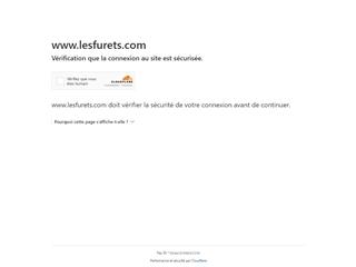 Les Furets.com : assurance auto