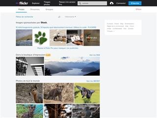 Flickr : Animals
