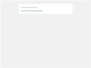 Journal LittéRéticulaire