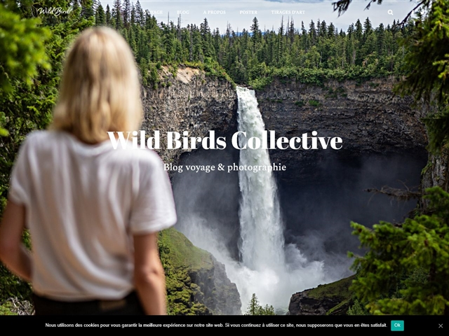 Wild Birds Collective
