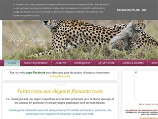 1000 Pattes - Wildlife Gateway