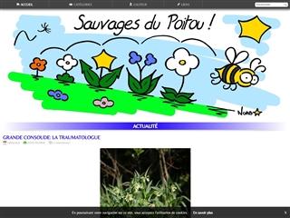 Sauvages du Poitou
